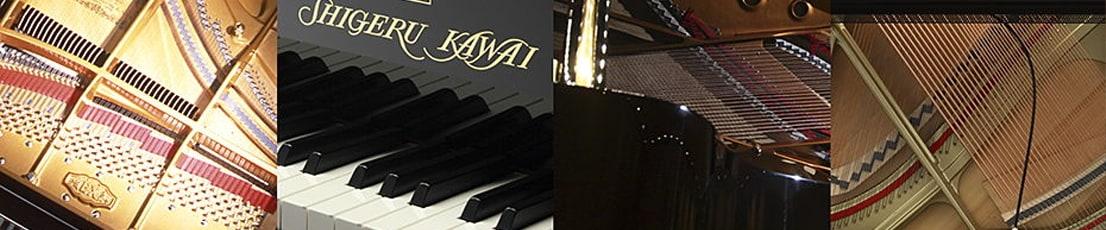 sk ex kawai ca99